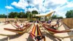 Marc Coucke en Tomorrowland bouwen vakantiedorp met unieke sfeer van festival