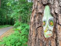Mysterieuze maskers op bomen in wandelgebied, kunstenaar onbekend