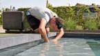 Iedereen wil deze zomer een eigen zwembad, maar dat zal niet lukken