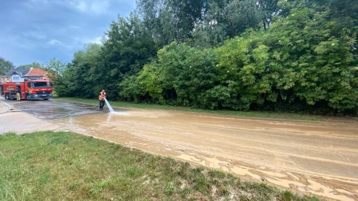 Wolkbreuk zorgt voor modderstroom in 's Herenelderen