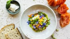 Sjiek zomerrecept: coeur de boeuf tomaat met burrata en tuinbonen
