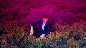 TOP OF FLOP. Absynthe Minded: De psychedelische kleurexplosie van Bert Ostyn