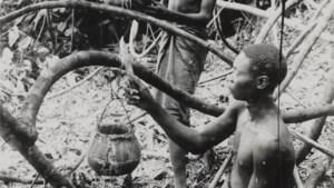 Minder doden tijdens Congo-bewind Leopold II dan gedacht, maar de gruwel blijft