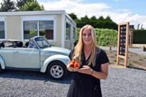 Lommelse opent drive-in vol lekkers met aardbeien