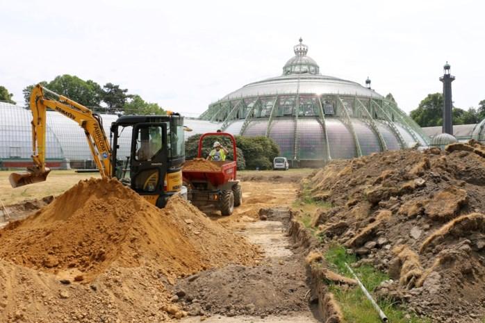 Brussels afval houdt de koning warm deze winter, maar daardoor is zijn tuin nu wel een werf
