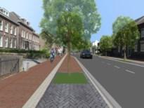 Maastricht laat bewoners Tongereseweg kiezen uit twee varianten van herinrichting