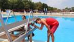 Maximaal 800 bezoekers per dag in zwembad Halve Maan