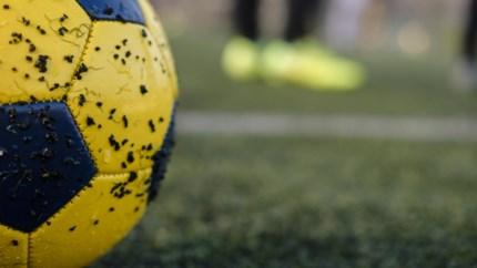 Alle transfers uit het Limburgse voetbal op een rijtje