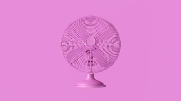 Viva de ventilator: tien modellen die mooi staan in huis