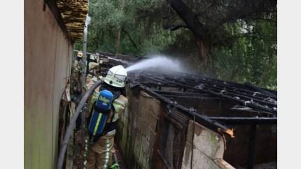 Grote dierenstal gaat in vlammen op