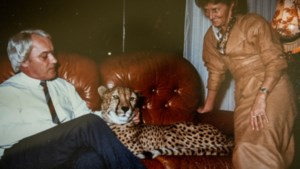 Met een jachtluipaard op de sofa: lees de nieuwe zomerreeks in onze app