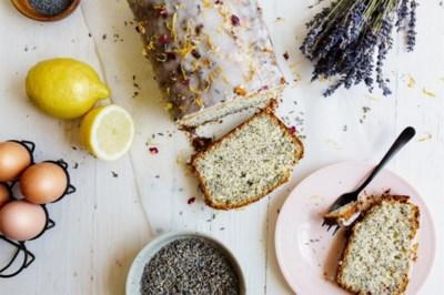 Sjiek smult van de zomer: Limburgse chefs en foodies delen hun favoriete recepten