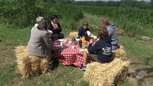 PicknickPoint lanceert online boekingsplatform voor picknicks