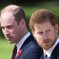 William en Harry verdelen erfenis van Diana over hun eigen stichtingen