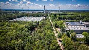Na alle discussie: vier keer meer industrie is groen geworden