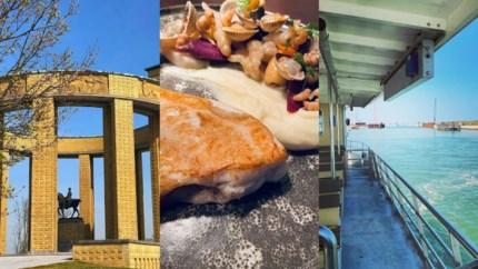 Zeehonden spotten, logeren op een woonboot en shoppen: tips voor wie Nieuwpoort wil verkennen