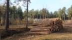 Een vijfde minder bomen gekapt… dankzij de letterzetter