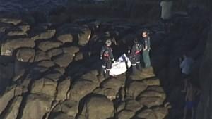 Deze maand al twee surfers doodgebeten door haai in Australië