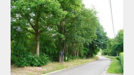 Meer dan honderd handtekeningen tegen sociale woningen voor Leopoldsburg