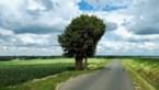 Groen vraagt hulp van burgers om natuur in kaart te brengen
