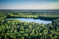 Milieuverenigingen dienen samen bezwaarschrift in tegen kap Groene Delle
