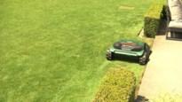 Zolders koppel patenteert tuinboord om grasmaaien te vergemakkelijken