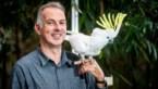 Van tinamoes tot toerako's en af en toe een pinguïn: het vogelparadijs in Pelt