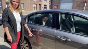 Al 29 meldingen van beschadigde auto's in Sint-Truiden