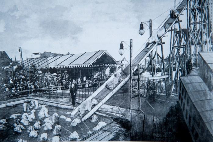 Circusschool op de Cauberg had net dat tikkeltje extra: met 70 ijsberen van een glijbaan