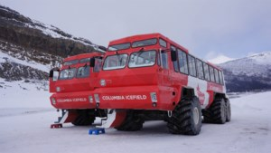 Toeristenbus kantelt in Canadese Rocky Mountains: drie doden