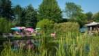 Van waterpret tot virtueel Tomorrowland: onze tien zomertips