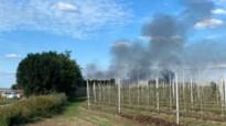 Asbestvervuiling beperkt tot nabije omgeving na loodsbrand Wijer