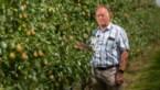 """Vlaams Parlementslid Steven Coenegrachts: """"Biolandbouw moet een vak worden"""""""
