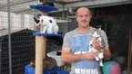 """Truiens dierenasiel loopt Vlaams geld mis: """"Omdat we adopteereendier.be niet gebruiken"""""""