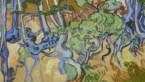 Plek waar Van Gogh zijn laatste werk maakte ontdekt en nog steeds herkenbaar
