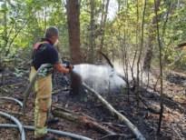 Brandweer rukt uit voor bosbrandje in Dorne