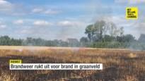 Eén hectare graan brandt af in Millen
