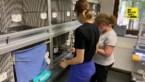"""Natuurhulpcentrum verpulverde alle records tijdens lockdown: """"Nooit zo veel dieren binnengebracht"""""""