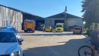Zoon (21) van molenaar in Riemst verliest zijn voet bij ongeval