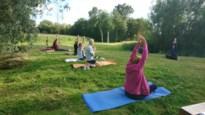 Senioren van Lanaken doen aan yoga in het zonnetje