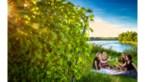 Limburg versus West-Vlaanderen: wie heeft de mooiste picknick-plekjes?