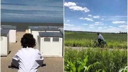 Limburg versus West-Vlaanderen: waar kan je het mooist fietsen?