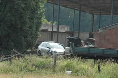 Illegale slachtplaats ontdekt in boerderij in Dilsen