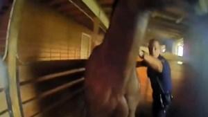 Agenten riskeren hun leven om paard uit brandende schuur te redden