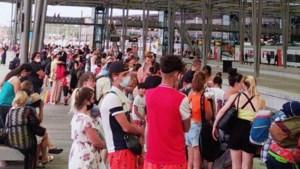 Autocarfederatie lanceert voorstel om toeristen met bussen naar de kust te brengen