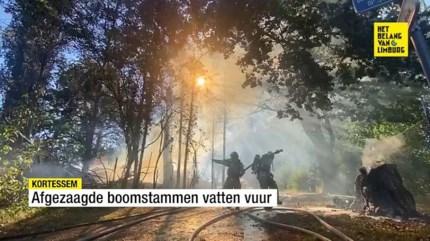 Boomstammen vatten vuur in Vliermaal
