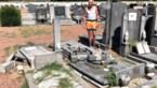 Vandalen vernielen 13 graven op kerkhof Zichen-Bolder