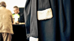 Dronken vrouw riskeert 6 maanden cel voor stampen van agenten tijdens arrestatie