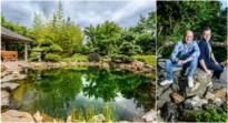 Koppel uit Dilsen-Stokkem bouwde hun Japanse rotstuin met keien uit de Maas