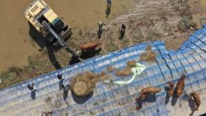 Minstens dertig doden bij overstromingen en aardverschuivingen in Zuid-Korea